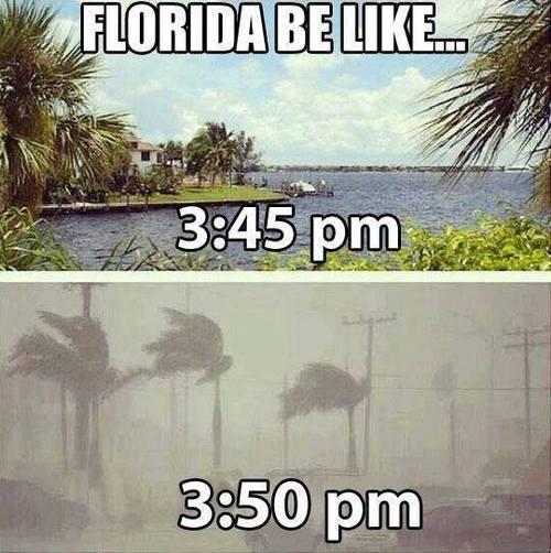Florida be like
