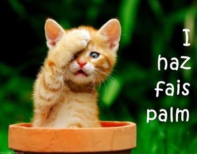 kittyfacepalm1