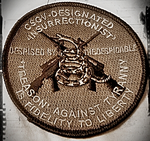 Insurrectionist Patch