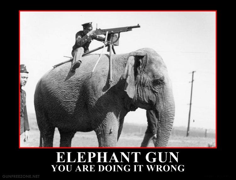 elephant gun1