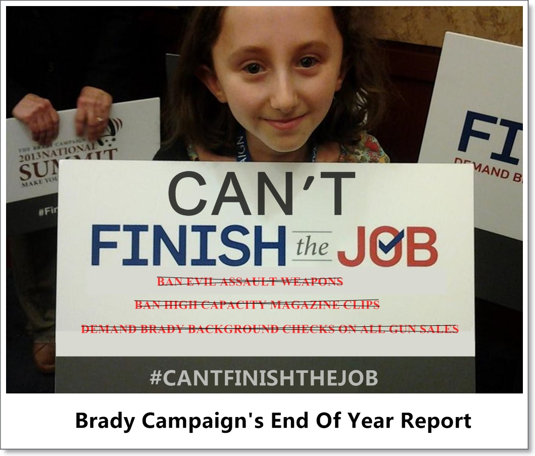 Brady Campaign's End Of Year Report