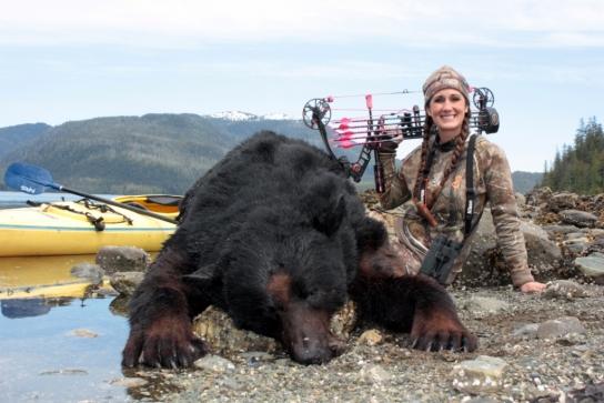 bachman bear