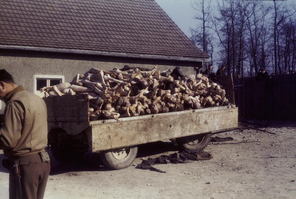 Buchenwald 1