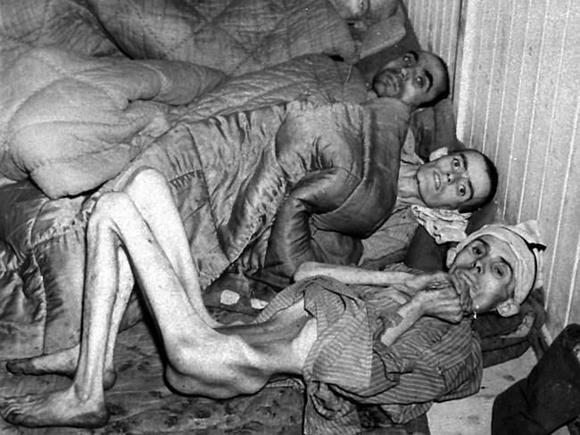Buchenwald 3