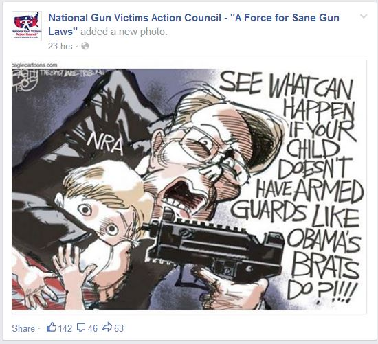 National Gun Victims Action Council SANE