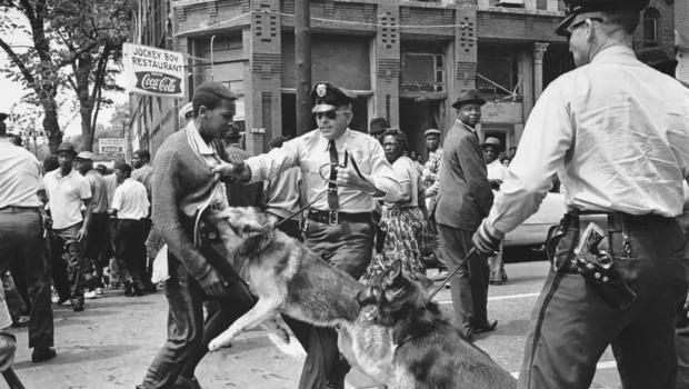 Birmingham Police dogs 1