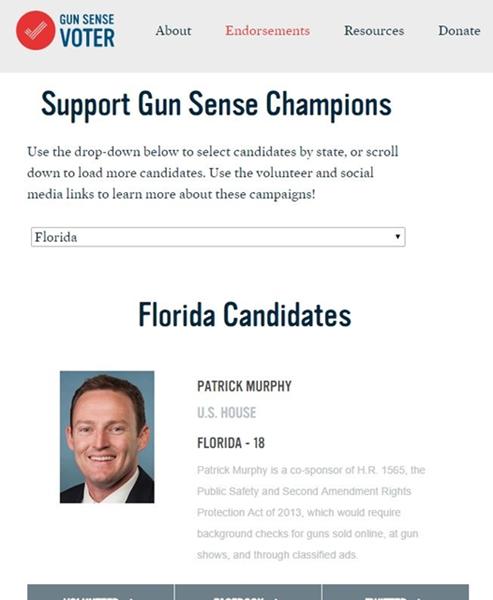 gun sense voter florida