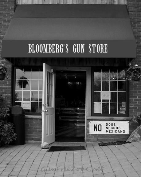 Bloomberg Gun Store 2