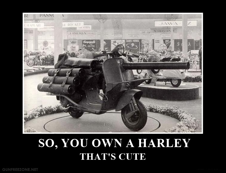 SO YOU OWN A HARLEY