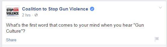 CSGV Gun Culture
