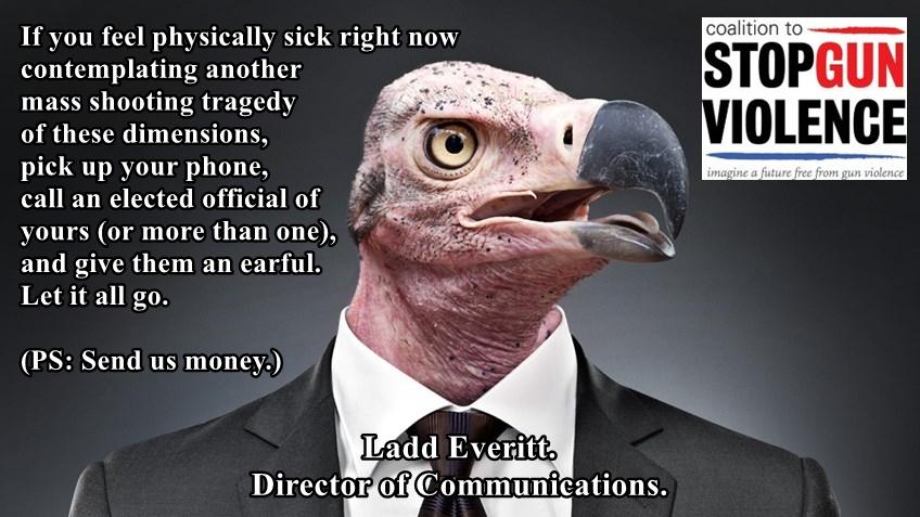 CSGV vulture