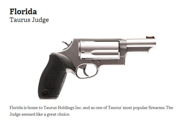 Florida Gun