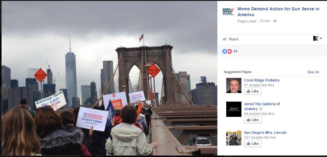 Moms Demand Bridge 1