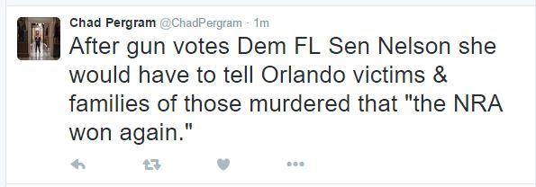 Florida Scum Senator Nelson No Fly