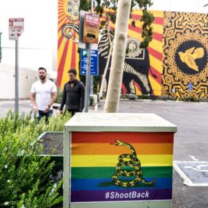 Rainbow-Gadsden-flag2