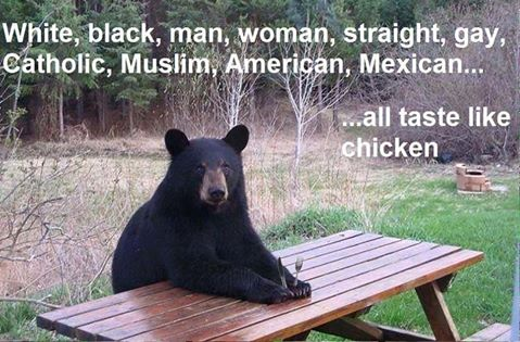 bear-equal-rights