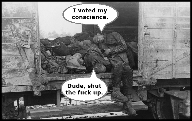 vote-your-conscience