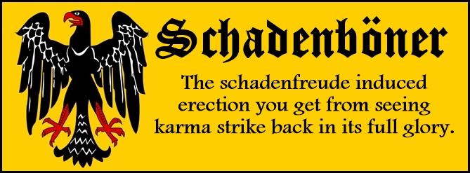 schadenboner2